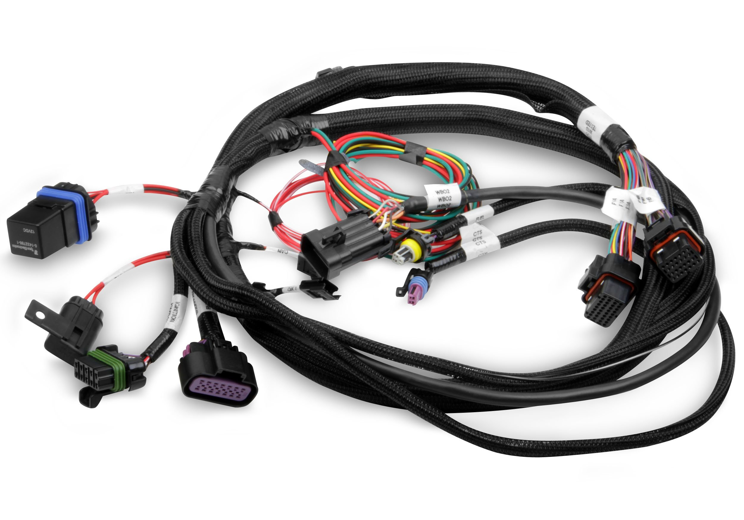 Holley Efi 558 414 Terminator Main Harness Wiring Diagram Image