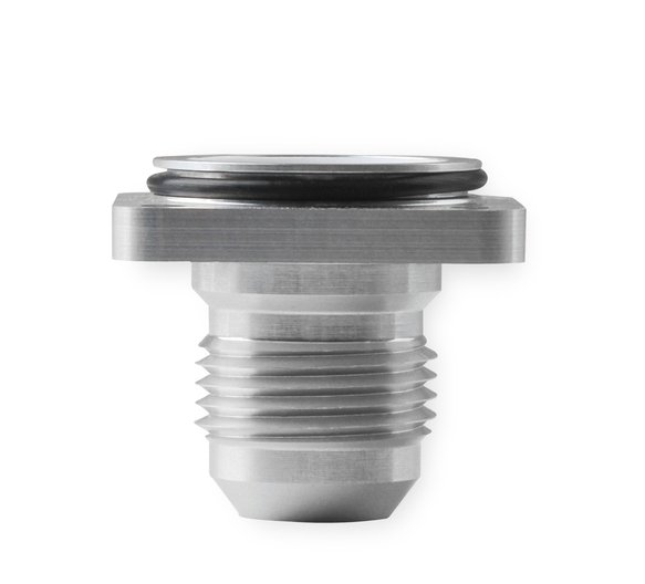 230511ERL - Earls Replacement End Cap for UltraPro Ball Valve -10 Male - additional Image