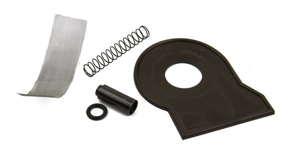 30-128QFT - QFT 125/155 Gasket and Spring Kit Image