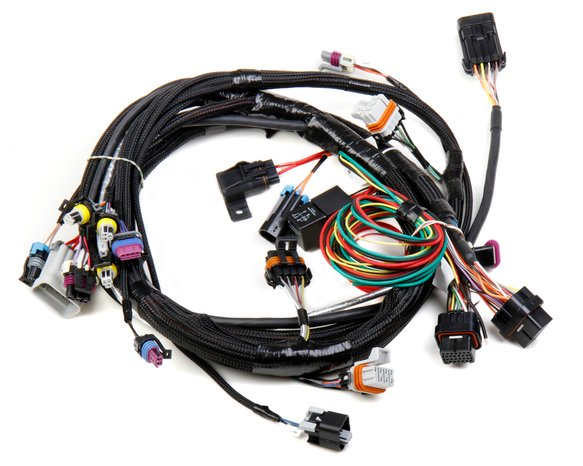 558-102 - LS1/6 (24x/1x) Engine Main Harness Image