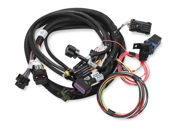 558-121 - Terminator Stealth 2x4 MAIN HARNESS Image