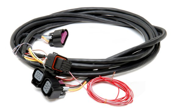 558-411 - Dominator EFI GM Dual Drive-By-Wire Harness Image