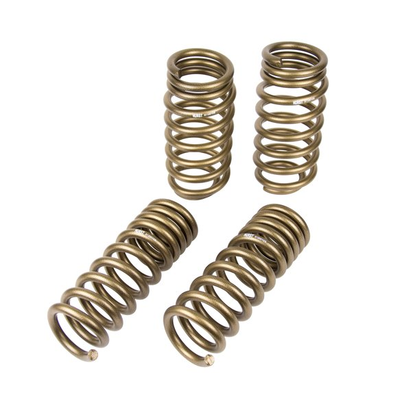 6130010 - Hurst Stage 1 Performance Spring Kit Image