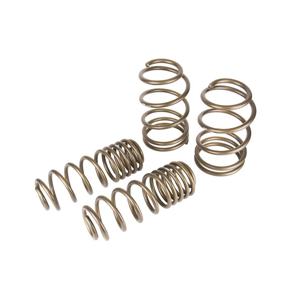 6130021 - Hurst Stage 1 Performance Spring Kit Image