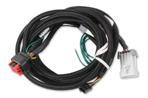80002 - Pro 600 EFI and LS Harness Image
