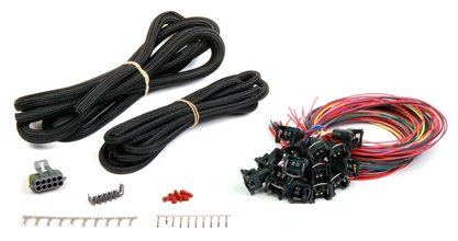 Unterminated 16 injectors MPFI harness