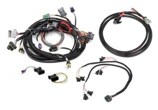 Holley EFI 554-113 HP EFI ECU on transfer case wiring harness, cressida 1jz wiring harness, eg k-series harness, jeep wiring harness, cooling fan wiring harness, spark plug wiring harness, electrical wiring harness, ignition switch wiring harness, toyota wiring harness, s14 1jz wiring harness, cruise control wiring harness, fuel pump wiring harness, ls1 engine swap harness, silverado dash wiring harness, 94 silverado engine wire harness, engine swap voltage regulator, hot rod wiring harness, throttle body wiring harness, t-bucket wiring harness,