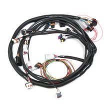 LS2/3/7+ (58x/4x) Engine Main Harness
